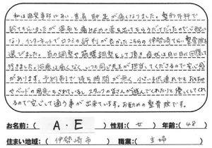 伊勢崎市 交通事故の首治療 40代 A.E様 女性